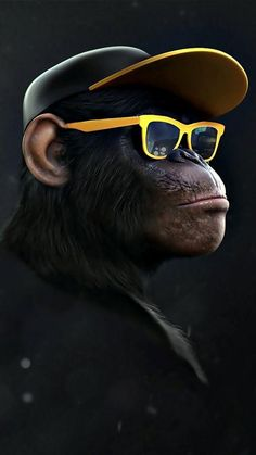 Monkey Wallpaper, Tier Wallpaper, Animal Wallpaper, Screen Wallpaper, Wallpaper Samsung, Dope Wallpaper Iphone, Monkey Art, Monkey Drawing, Monkey Style