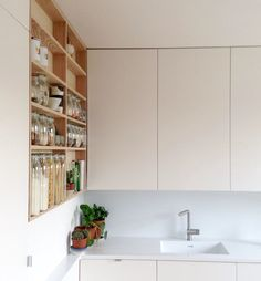 Emil Eve Architects kitchen with ash shelves