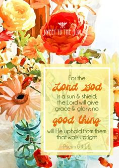 For the Lord God is a sun and shield; the Lord will give grace and glory; no good thing will He withhold from them that walk upright.  Psalm 84:11