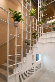 Pot plants cover trellis-like walls inside London cafe by Neiheiser Argyros
