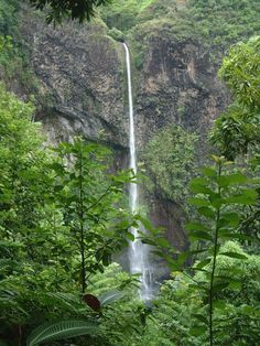 Tahiti Waterfalls