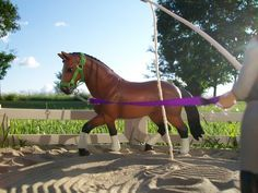 Official Name: AHS Internal Echo · Barn Name: Echo · Gender: Mare · Breed: Hanoverian · Echo is another of our dressage and jumping horses. Every once in a while she is used for lessons. Schleich Horses Stable, Horse Stables, Horse Tack, Clydesdale Horses, Arabic Horse, Bryer Horses, Horse Accessories, Hobby Horse, Horse Crafts