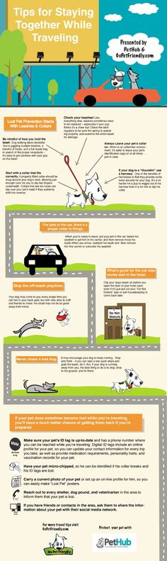 Infographic - Tips to Prevent Your Pet From Getting Lost
