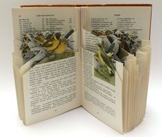 altered book pages