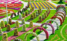 Located in Dubailand near the Arabian Ranches and opened on Valentine's Day, Dubai Miracle Garden contains over 45 million flowers over a 72,000 sq metre site and, as well as traditional flowerbeds,