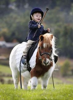Is this a Polo pony? Cute little boy riding his fuzzy chubby fluffy pony! Horse Photos, Horse Pictures, All The Pretty Horses, Beautiful Horses, Poney Miniature, Animals For Kids, Cute Animals, Cute Ponies, Baby Horses
