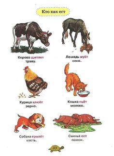 Russian Lessons, Russian Language Learning, Learn Russian, Reggio Emilia, Preschool, Education, Words, Prints, Poster