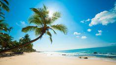 Beautiful Sunny Beach Wallpaper