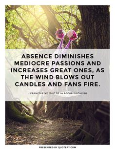Absence diminishes mediocre passions and increases great ones, as the wind blows out candles and fans fire.