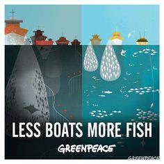 """""""ปลาหายไปไหน..จากทะเลไทย"""" ถึงแม้ว่าทะเลและมหาสมุทรอาจจะดูเป็นเรื่องที่ดูห่างไกลจากพวกเรา แต่ประเทศไทยมีพื้นที่ติดกับทะเลถึง 23 จังหวัด ทะเลไทยอาจจะมีพื้นที่ไม่มากนักแต่ทะเลไทยเป็นที่ยอมรับโดยทั่วกันว่ามีความหลายหลายทางชีวภาพสูงมากเมื่อเปรียบเทียบกับบริเวณอื่นๆของโลก แต่ที่ผ่านมาการใช้ประโยชน์พื้นที่ชายฝั่งและการพัฒนากิจการประมงไปในทางทำลายเพื่อกอบโกยเงินนั้นได้ทำให้ทะเลไทยเสื่อมโทรมและมีปัญหาเข้าสู่ขั้นวิกฤต การประมงอุตสาหกรรมแบบล้างผลาญ จับทั้งปลาน้อยและปลาใหญ่…"""