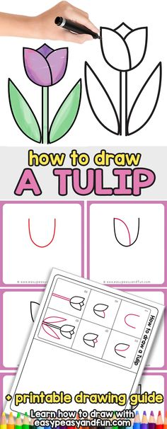 to Draw a Tulip for Kids - Easy Step by Step Tutorial - Easy Peasy and Fun How to Draw a Tulip - Easy Step By Step Drawing Tutorial for KidsHow to Draw a Tulip - Easy Step By Step Drawing Tutorial for Kids Flower Drawing For Kids, Tulip Drawing, Easy Flower Drawings, Flower Drawing Tutorials, Drawing Tutorials For Beginners, Easy Drawings For Kids, Drawing Drawing, Learn Drawing, Figure Drawing