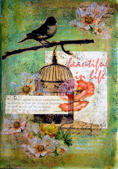 Bird cage card