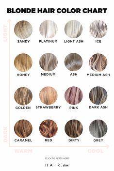 Blonde Hair Shades, Blonde Hair Looks, Hair Color Shades, Brown Blonde Hair, Black Hair, Ash Hair, Light Ash Blonde, Ash Blonde Hair Balayage, Cool Ash Blonde