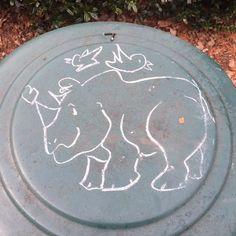 Rhino love chalk #chalkhappens #benignvandalism