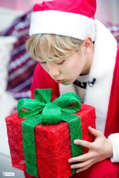 The gift to my heart ekfjkekg Woozi, Wonwoo, Jeonghan, The8, K Pop, Astro Sanha, Day6 Sungjin, Boo Seungkwan, Choi Hansol