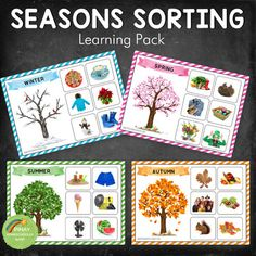 Four Seasons Sorting Activity (REAL IMAGES) - The little thins - Event planning, Personal celebration, Hosting occasions Continents Activities, Seasons Activities, Counting Activities, Hands On Activities, Preschool Activities, Spring Activities, Layers Of The Ocean, Montessori Color, Four Seasons