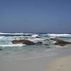 Asilomar State Beach Ca