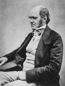 Charles Darwin – naturalist, associated with the theory of evolution by natural selection