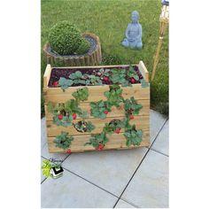 film plastique pour paillage et b che pour plantation fraisiers et potager sans entretien. Black Bedroom Furniture Sets. Home Design Ideas