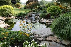 kreative Gartengestaltung -Wasserpflanzen - Steinrand