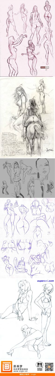 How to draw a woman riding a horse - drawing reference - human anatomy Body Drawing, Anatomy Drawing, Human Anatomy, Female Drawing, Drawing Sketches, Art Drawings, Sketching, Serpieri, Poses References