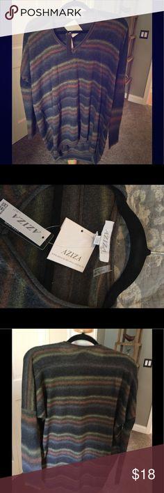 Nwt lightweight multi colored sweater Size small v neck sweater aziza Sweaters V-Necks