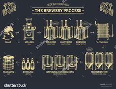 Vector Beer Infographics With Illustrations Of Brewery Process. Brewery Infographics Design. Beer Process Hand Sketched Illustrations. Beer Process With Brewery Elements. Brewery Sketch. Craft Beer. - 301015859 : Shutterstock