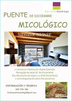 puente-diciembre-micologico-2013