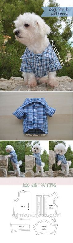 Dog Shirt Model Mimi and Tara Free models for dog clothes Source For more pins visit our homepage Puppy Clothes, Diy Clothes For Dogs, Diy Dog Bed, Dog Clothes Patterns, Dog Pattern, Free Pattern, Dog Jacket, Dog Items, Pet Costumes