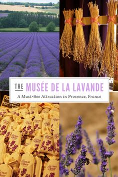 If you're heading to the lavender fields of Provence, France, be sure to schedule in a trip to the Musee de la Lavande - the Lavender Museum of Provence! Family owned and operated, it tells a story of lavender's importance to the region - and to the Lincelé family of the Château Du Bois.