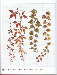 Hauntingly beautiful flower patterns...all with color charts.   Gallery.ru / Фото #70 - l'Herbier du jardin - Mosca