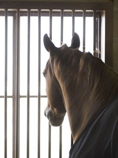 A great article on colic prevention from our friends at Smartpak.