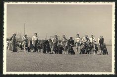 tolle Foto-AK Hundeschule, Hundeführer Prüfung 1939