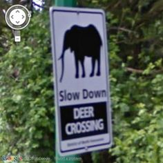 Deer Crossing?  Hmmmm - seen at Mount Seymour Parkway, North Vancouver, British Columbia, Canada...    from Google