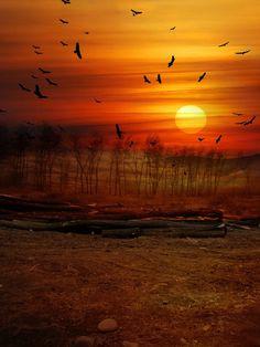 **Image source: .sundown.in.deadlands.
