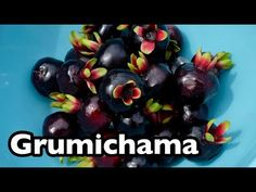 All About Grumichama! - YouTube