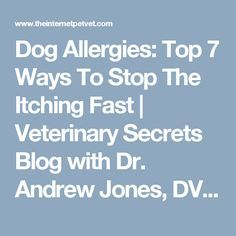 Dog Allergies: Top 7 Ways To Stop The Itching Fast | Veterinary Secrets Blog with Dr. Andrew Jones, DVM