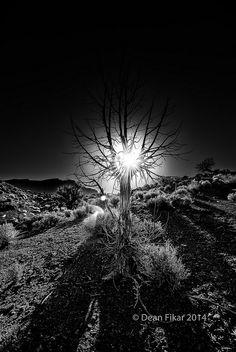 Dawn on Onion Creek Road | Flickr - Photo Sharing!
