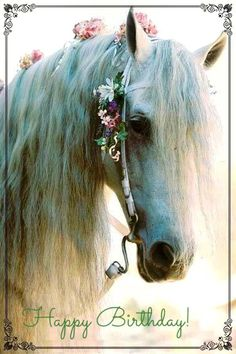 Beautiful White Horse Laced With Delicate Pink Flowers in Her Mane. Beautiful White Horse Laced With Delicate Pink Flowers in Her Mane. - Art Of Equitation All The Pretty Horses, Beautiful Horses, Animals Beautiful, Beautiful Things, Beautiful Pictures, Animals Amazing, Beautiful Drawings, Animals And Pets, Cute Animals
