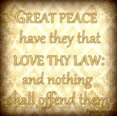 Great peace have they that love thy law: and nothing shall offend them. KJV Bible Verse - Psalm 119:165 smartandsavvymom