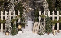 Place in the Pines Entry – Baby Dream Backdrops Baby Christmas Photos, Christmas Mini Sessions, Christmas Minis, Diy Christmas Tree, Christmas Settings, Winter Christmas, Christmas Themes, Christmas Photography Kids, Christmas Backdrops