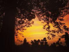 Ô Sunlight! The most precious gold to be found on Earth :- Roman Payne # sunset #goldensky #sky #latehartourism by latehar_tourism