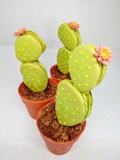 Torta vaniglia con farcitura di namelaka al lime . Fiori / piante cactus in pasta di zucchero e Cactus macarons farciti al pistacchio