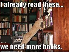 First thing's first: There's no such thing as too many books.