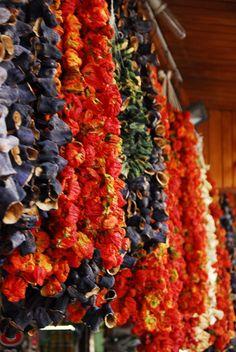 biber patlıcan gaziantep color  by ayce