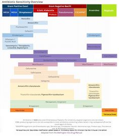 Antibiotic Sensitivity Overview Cheat Sheet