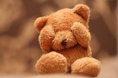 Cute Teddy Bear girly cute shy teddy bear
