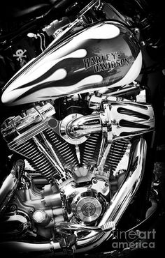 Harley Davidson Photograph - Pure Harley Chrome by Tim Gainey