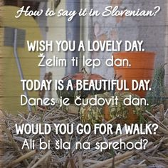 Good morning! Are you up for learning some Slovenian words? Take a look.  #Slovenia #Slovenija #Ljubljana #Europe #Slovenianlanguage #language #learnSlovenian #learn #study #vacations #tourism #tourist #instatravel #travel #traveler #travelling #passport #holidays #enjoy #family #friends #freetime #goodvibes #instadaily #inspiration #motivation #love #positivethoughts #HouseVida