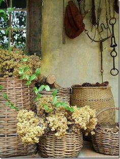 dried hydrangea in baskets via pinterest